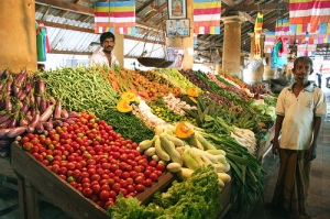Sri Lanka's bountiful harvest