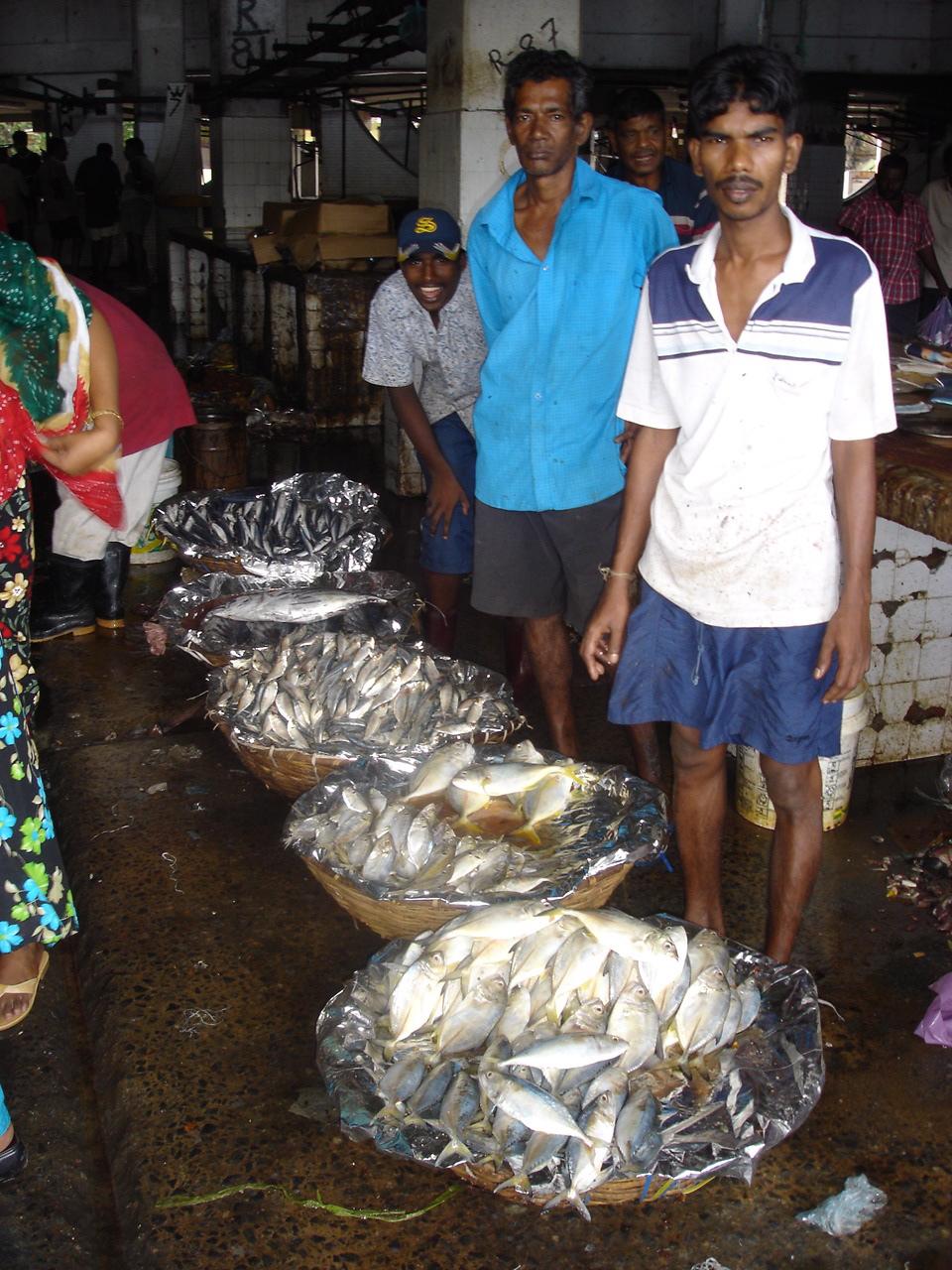 The Colombo Fish Market