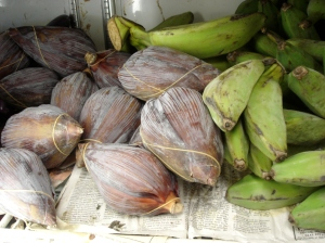 banana blossoms (left) and plantains (right)