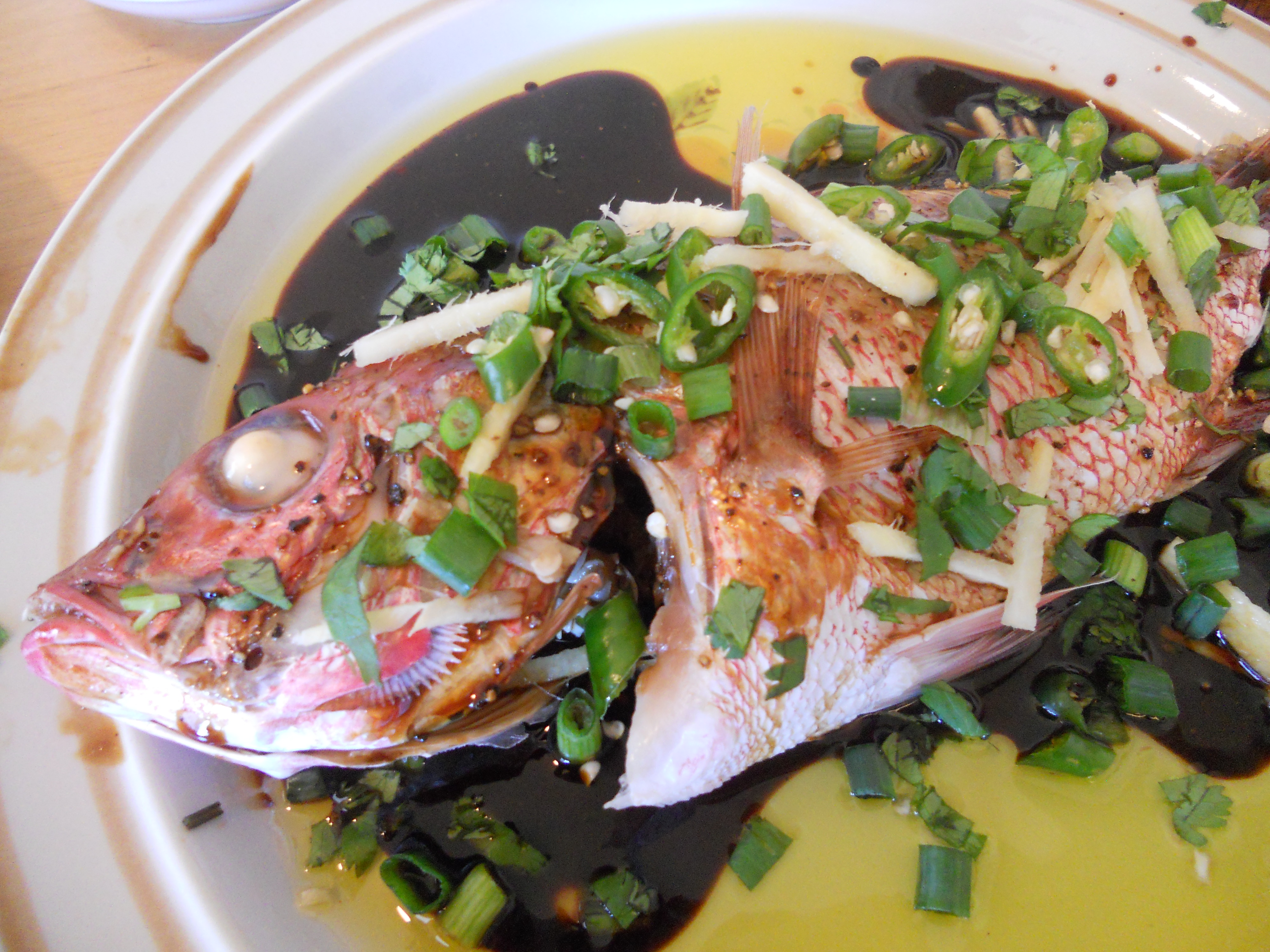 Pan asian steamed fish with soy sauce hong kong rice curry if forumfinder Images