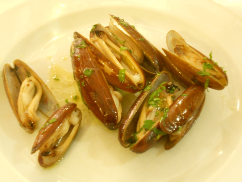 brown mussels from the Adriatic